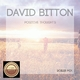 David Bitton Positive Thoughts (Boiler Mix)
