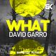 David Garro - What