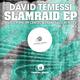 David Temessi Slamraid