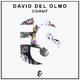 David del Olmo - Scout