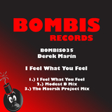 I Feel What You Feel by Derek Marin mp3 download