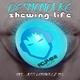 Desmonduke Shewing Life