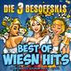 Die 3 Besoffskis - Best of Wiesn Hits: Die Oktoberfest Schlager Party Klassiker