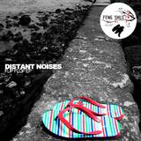 Flip Flop by Distant Noises mp3 download