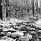 Dj Ej - Ernani Joppert Snowfall EP