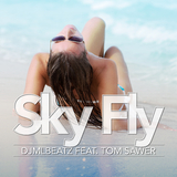 Sky Fly by Djmlbeatz feat. Tom Sawer mp3 download
