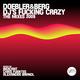 Doebler & Berg Dj's Fucking Crazy 2K9