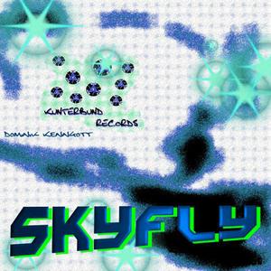 Dominik Kenngott - Skyfly (Kunterbund Records)