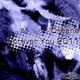Dreena Forever You 2011