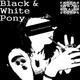 Einzelkuenstler Black & White Pony