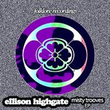 Misty Trooves by Ellison Highgate mp3 download
