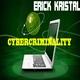 Erick Kristal Cybercriminality