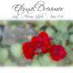 Eternal Dreamer feat. Aloma Steele Kiss Me
