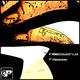 F.Gazza & Insectworld Meccano Maxi Kit