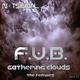 F.U.B. Gathering Clouds (The Remixes)