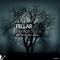 Speak Louder (Devid Dega Remix) by Fellar mp3 downloads