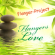 Flanger-Project Flangers Love