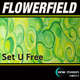 Flowerfield Set U Free
