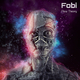 Fobi Flow Theory