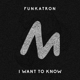 I Want to Know by Funkatron mp3 download