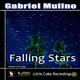 Gabriel Mulino Falling Stars