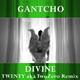 Gantcho Divine - Twenty aka Twozero Remix