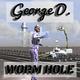 George D Worm Hole