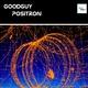 Goodguy Positron