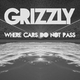 Grizzly Project - Where Cars Do Not Pass