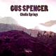 Gus Spencer - Cholla Springs