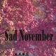 H.A.N.S. Sad November (tribute to Robert Enke)
