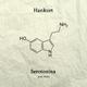 Hankurt Serotonina