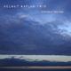 Helmut Kaplan Trio Different Feelings(Download)