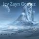 Icy Zayn Gomez We Still Got Time to Party