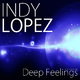 Indy Lopez Deep Feelings(This Is Not Acid Mix)