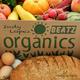 Indy Lopez Organics Beatz