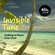 Invisible Tune Nothing to Prove(Deepmix)