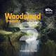 Invisible Tune Woodsland Tremnitz