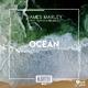 James Marley feat. Nathan Brumley Ocean