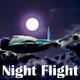Jazzy Babe Night Flight
