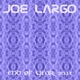 Joe Largo End of Year 2011