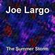 Joe Largo The Summer Storm