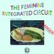 Johannes Eggenberger The Feminin Integrated Circuit