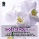 Joseph Christopher Ghost of You(Remixes)