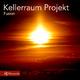 Kellerraum Projekt Fusion