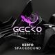 Kerfo Spacebound