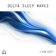 Kevin Csizi - Delta Sleep Waves