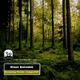 Klaus Benedek Screaming Woods