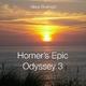 Klaus Bruengel Homer's Epic Odyssey 3