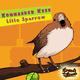 Kommander Keen Little Sparrow